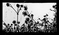 Linolschnitt, Gras, Natur, Nebenbeigekritzel