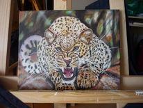Wald, Malerei, Tiere, Jaguar