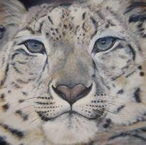 Portrait, Acrylmalerei, Schneeleopard, Malerei