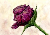 Muttertag, Natur, Liebe, Rose