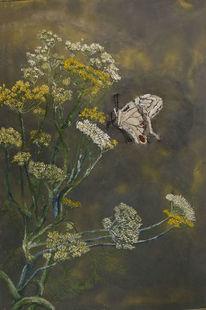 Pflanzen, Sommer, Fenchel, Schmetterling