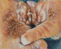 Schnurren, Katzenportrait, Katze, Rotes fell