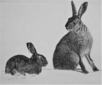 Hase, Ostern, Zeichnungen,