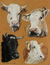 Kuh, Pastellmalerei, Tierportrait, Rind