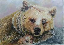 Tiere, Tierwelt, Bär, Acrylmalerei