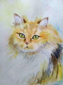 Katzenportrait, Aquarellmalerei, Rothaarige katze, Tiere
