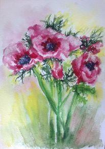Pflanzen, Natur, Anemonen, Blumen