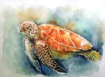 Aquarellmalerei, Schildkröte, Meeresschildkröte, Schwimmen