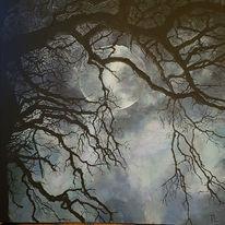 Wald, Baum, Mond, Nebel