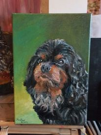 Hund, Portrait, 11 jahre alt, Malerei