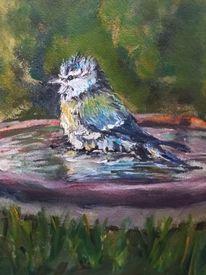 Vogel, Vogeltränke, Malerei