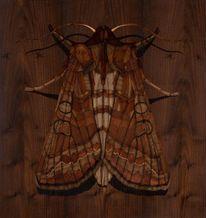 Intarsienbilder, Marketerie, Kunsthandwerk, Holz