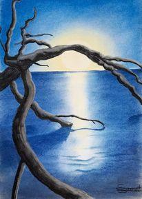 Mond, Licht, See, Äste
