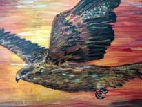 Himmel, Höhe, Freiheit, Adler