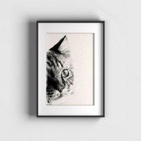 Sketchus, Tier zeichnen lassen, Tiere, Zeichnungen