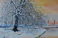 Bäume im winter, Winterbaum, Winterlandschaft, Schnee