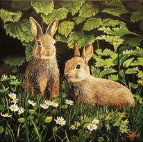 Tiere, Wildkaninchen, Acrylmalerei, Malerei