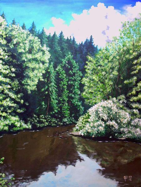 Fluss, Fichte, Mulde, Wasser, Wald, Spiegelung