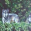 Landschaft, Wolf, Malerei, Beobachter