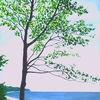 Baum, Jahreszeiten, Grün, Wasser