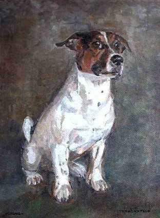 Hundeportrait, Gizmo, Tierportrait, Tiermalerei, Jack russel, Hundemaler