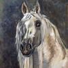 Pferdemaler, Tierportrait, Tiermalerei, Pferdeportrait