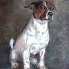 Tierportrait, Tiermalerei, Jack russel, Hundemaler