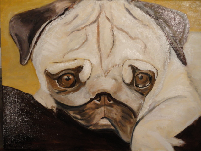 Augen, Fell, Tiere, Malerei, Hund, Mops
