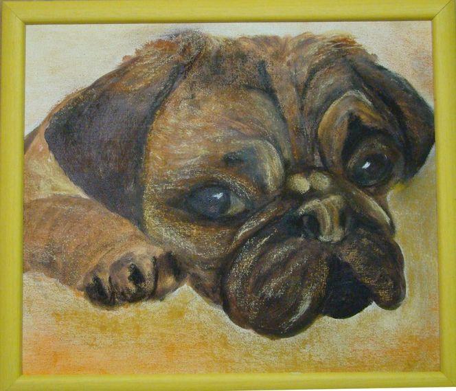 Braun, Acrylmalerei, Gelb, Tiere, Mops, Hund
