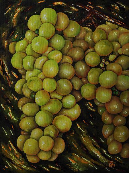 Weintrauben, Rebe, Wein, Malerei, Gemälde