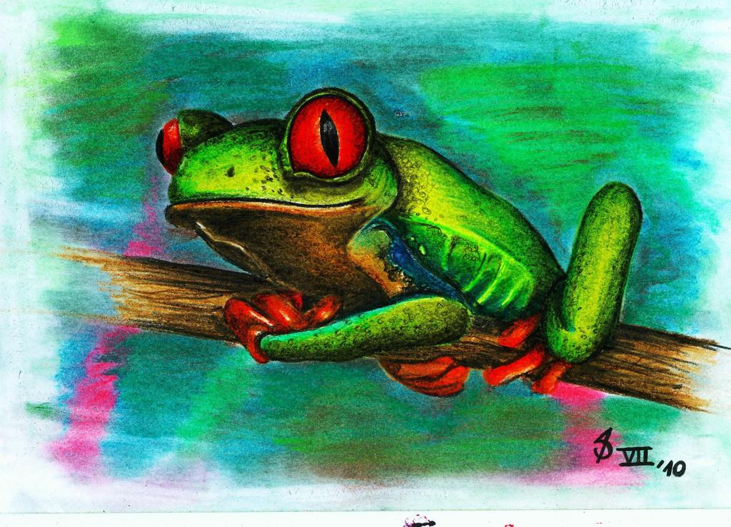 Rotaugenlaubfrosch - Bild / Kunst von Daniel Seltmann bei ...