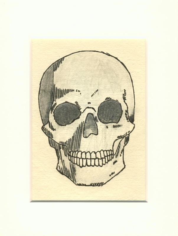 Totenkopf III - Zeichnung, Bleistiftzeichnung, Tusche, Schädel von ...
