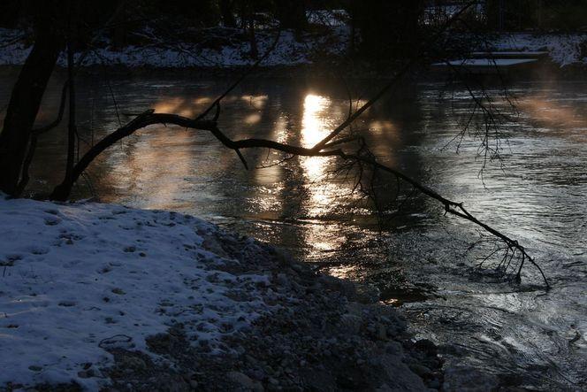 Licht, Strömung, Sonne, Baum, Spiegelung, Kalt
