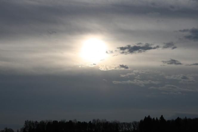 Wald, Himmel, Wolken, Sonne, Fotografie