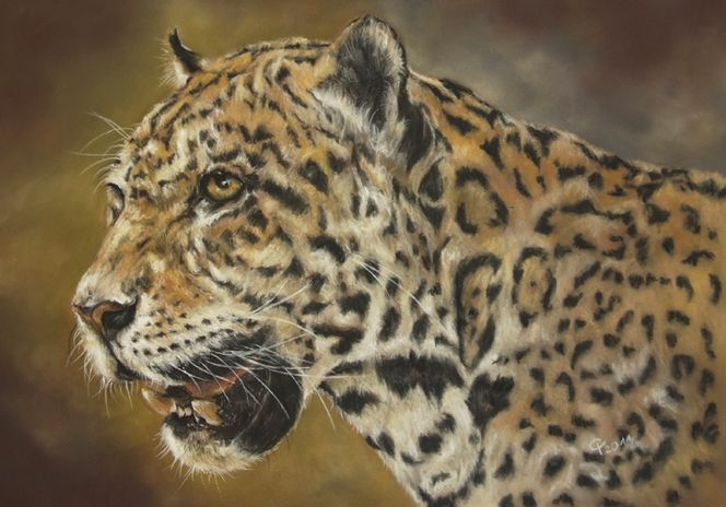 Leopard, Großkatze, Tiere, Pastellmalerei, Malerei, Fotorealismus