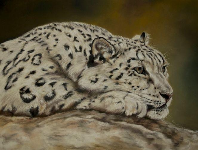 Tiere, Schneeleopard, Pastellmalerei, Figur, Malerei, Raubtier