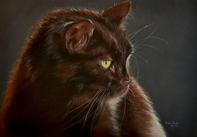 Katze, Pastellmalerei, Malerei, Kater, Haustier, Tiere