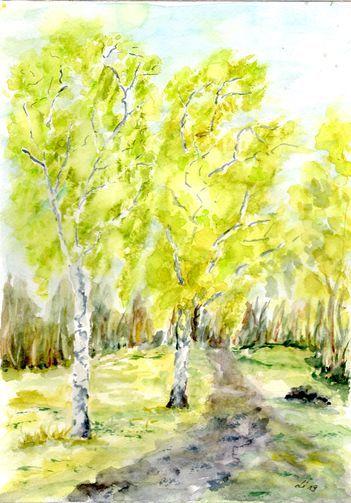 Birken, Birkenweg, Grün, Frühling, Aquarellmalerei, Weg