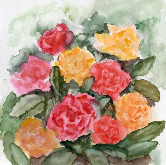 Strauß, Blüte, Aquarellmalerei, Rose, Aquarell