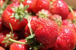 Erdbeeren, Fotografie, Stillleben