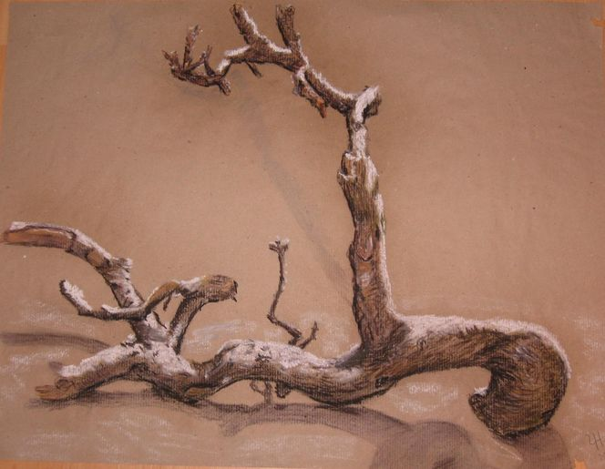 Zweig, Frost, Holz, Winter, Natur, Pastellmalerei