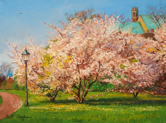 Magdeburger, Frühling, Blumen, Kirche, Malerei