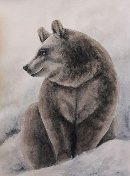 Tiere, Tiermalerei, Aquarellmalerei, Bär, Irina wall, Malerei