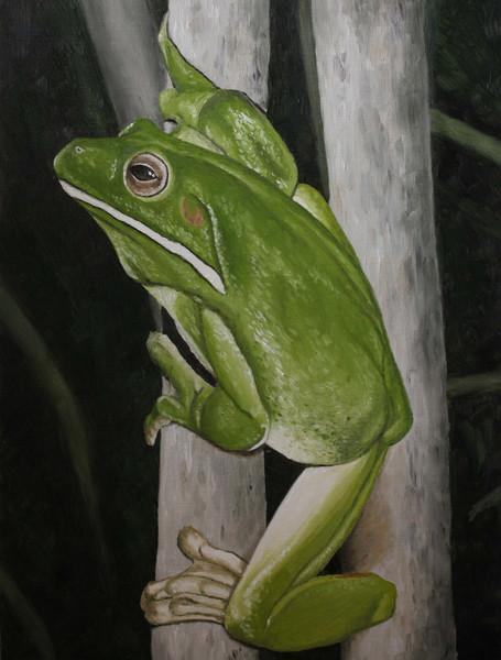 Tiermalerei, Frosch, Irina wall, Tiere, Malerei