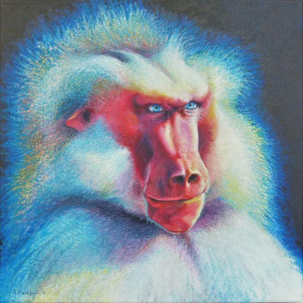 Chef, Pavian, Affe, Malerei, Tiere