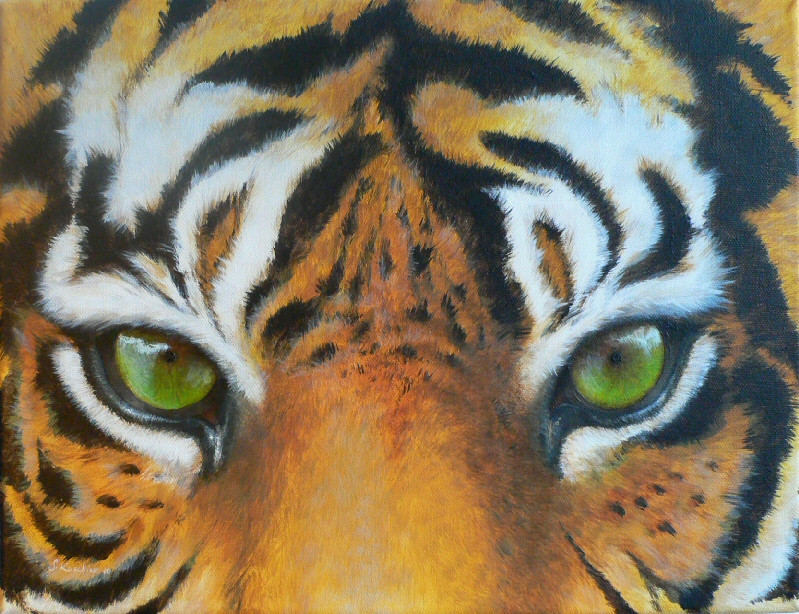 in the eye of the tiger portrait augen acrylmalerei tiger von sabine koschier bei kunstnet. Black Bedroom Furniture Sets. Home Design Ideas