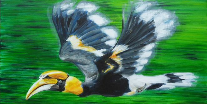 Im flug, Nashornvogel, Vogel, Hornbill, Malerei, Tiere