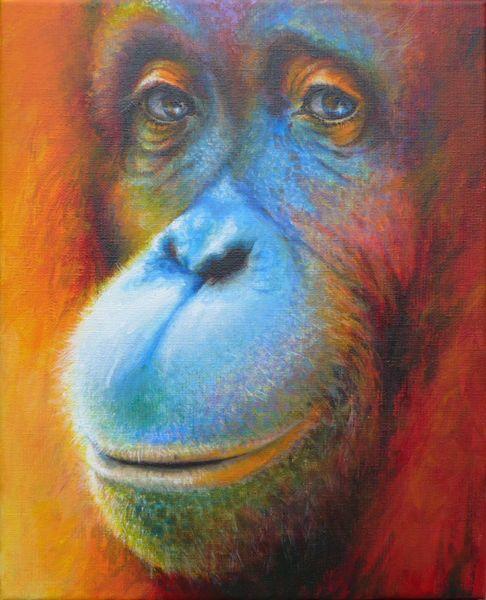 Borneo, Urwald, Affe, Menschenaffen, Orang utan, Malerei