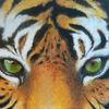 Augen, Portrait, Acrylmalerei, Tiger