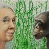 Portrait, Jane goodall, Acrylmalerei, Schimpanse